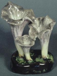 Lorenzen mushroom craterallus cornupoides a version of the first mushroom that started the trend