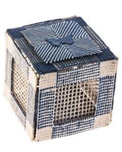 McCurdyButterfly Box Freed (Blue Butterfly Box 2.) 2012. Photo: Chris Riordan.