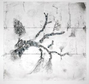 "Susan Collett. Tracing. 2008-2010. Drypoint. 38""H x 25""W"